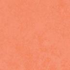 Цвет шкафа 24